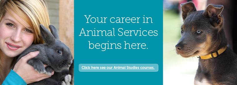 animal-studies-banner2